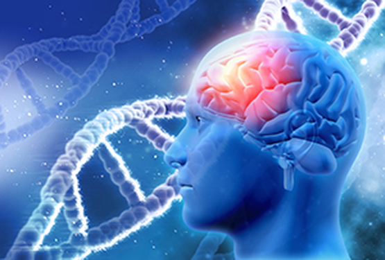 A new gene responsible for juvenile myoclonic epilepsy?